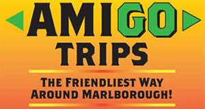 Amigo Trips Is Recommended By Tawny Hills BnB